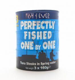 Fish 4 Ever Skipjack Tuna Steaks in Spring Water 160g x15